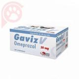 GAVIZ V 20MG CARTELA 10 COMPRIMIDOS