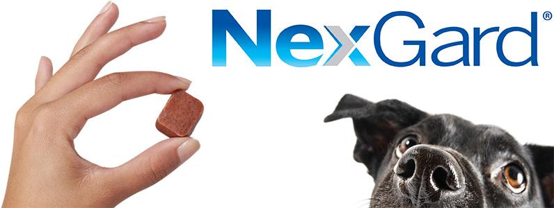 Nexgard merial mercearia do animal - Pulgas en casa sin animales ...